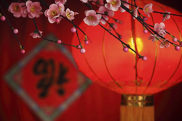 ¡Feliz Año Nuevo Chino 2017!
